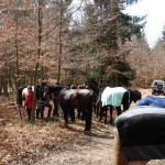 Ritt zur grünen Säule - 2012 -02