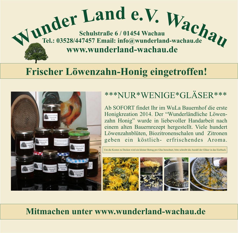 Löwenzahnhonig-16-04-14